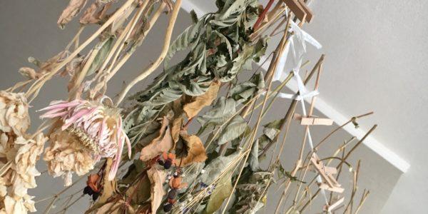 [超簡単]誰でもできる、結婚式、飾り付けにオススメ!ドライフラワーの作り方!
